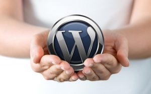 Wordpress websites that work for you